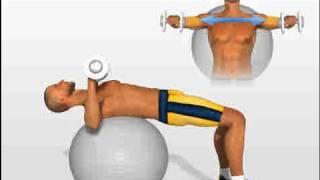 Chest Exercises: Dumbbell Press on swiss ball