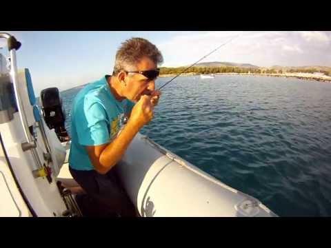live bait ΖΑΡΓΑΝΑ δολωμα για πολλα αρπαχτικα sotos fishing
