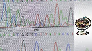The Historic Race to Decode the Human Genome (2000)
