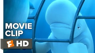 Finding Dory Movie CLIP - You're a Beluga (2016) - Ellen DeGeneres, Ty Burrell Movie HD