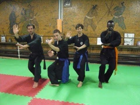 Association Paris Kung Fu : Clip/ Style Tigre et Dragon / PKF 2009-2010