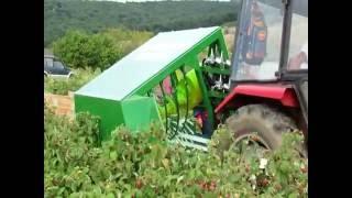 BERAČ ZA RIBIZLE, ARONIJU, ŠIPURAK I MALINE (POLANU) / Raspberry harvesting machine