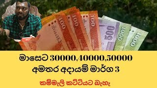 මාසෙට 30000,40000,50000   කම්මැලි කට්ටියට බැහැ - additional Income Streams in srilanka