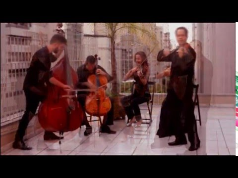 ELEANOR RIGBY - The Beatles / string quintet