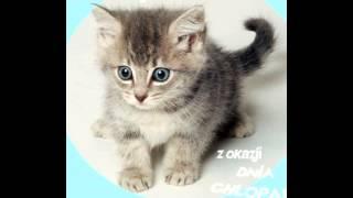 słodkie zdjęcia ♥♥♥!!!!!