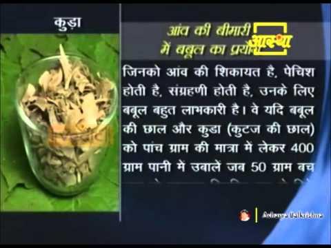 आंव (Mucus) की परेशानी में बबूल का आयुर्वेदिक लाभ | Acharya Balkrishna