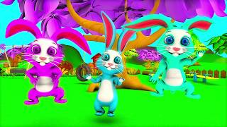 The Bunny Song |  Kindergarten Nursery Rhyme & Song for Kids