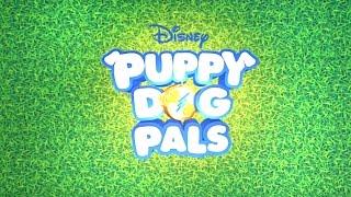 Puppy-Cam!   Puppy Dog Pals   Disney Junior