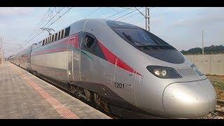 مفاجأة - مشروع القطار المصري الجديد - يربط العالمين بالسخنة والعاصمة الادارية