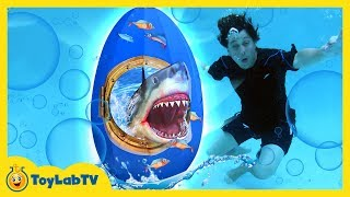 GIANT SHARK SURPRISE EGG! Pool Party Toys & Inflatable Float Water Toy Kids Family Fun for Children