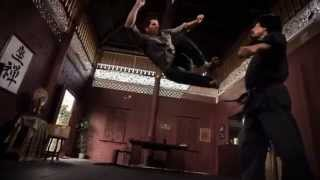 Ip Man Vs Ninja Shadow