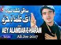 Ali Jee   Aye Alamdar E Haram   2017 / 1439