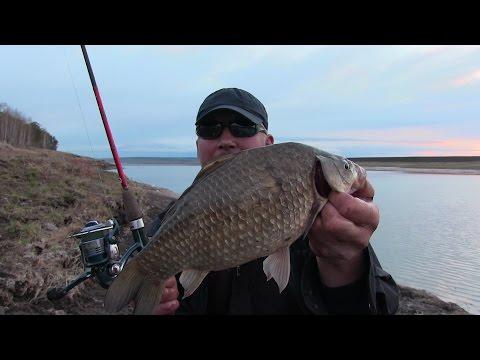 видео рыбалка на закидушки видео