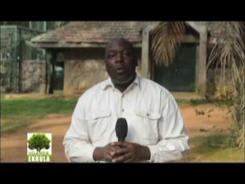 Uganda Ekkula:Ebyafaayo bya Zakayo