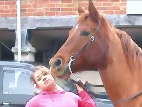 Xxx Mp4 My Love For This Horse Xx 3gp Sex