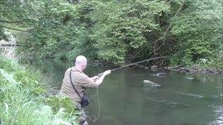#13 Mayfly Dry Fly Fishing - River Derwent
