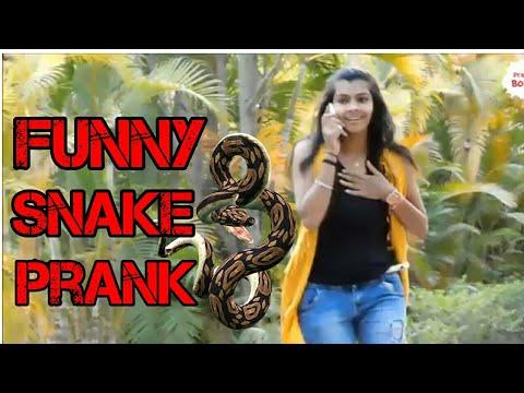 Funny Snake Prank | Most Funny Prank | Prank in India