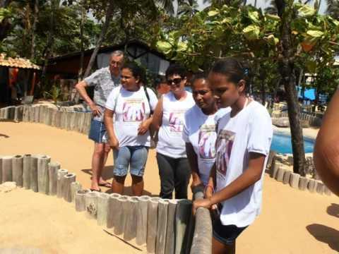 Oficina da Arte Visitando o Projeto Tamar na Praia do Forte