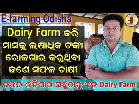 Xxx Mp4 A Success Story Of Dairy Farmer In Odisha North Odisha 39 S Biggest Dairy Farm 3gp Sex