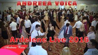 Andreea Voica - Ardelene Live Caransebes 2016 (Nunta Roxana si Ionica)