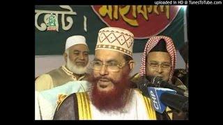 Islame Porda O Narir Odhikar - Delowar Hossain