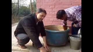Jeevamrut Organic Fertilizer