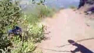 El Trauco En Los Cerros De Stgo De Chile