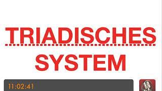 HP PSYCHOTHERAPIE AUSBILDUNG - Triadisches System