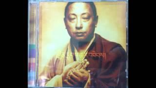 Lama Gyurme & Jean Philippe Rykiel   - Rain Of Blessings