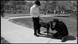 Mad Dog! short film --In Boulder International Film Fest