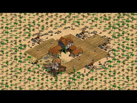AoE2 Forest Nothing What