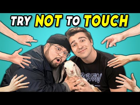 Try Not To Touch Challenge React