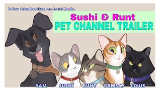 Sushi and Runt : Cat and Dog Pet Channel Trailer