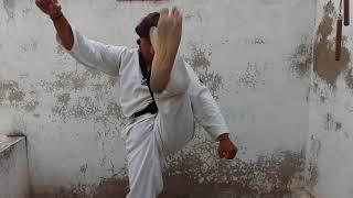 Martial art new king VISHJOSH