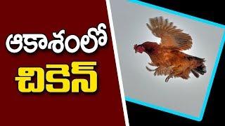 ఆకాశంలో చికెన్.. || Summer Effect On Chicken Price || Dildar Varthalu || Vanitha TV
