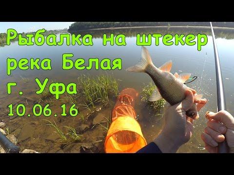 летняя рыбалка на реке уфа