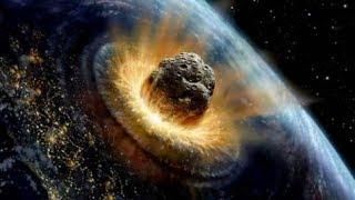Scientists Say Sixth Extinction Level Event Underway
