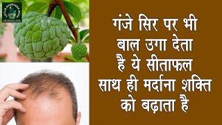 गंजे सिर पर भी बाल उगा देता है ये फल साथ ही मैनपावर को बढ़ाने में भी है रामबाण