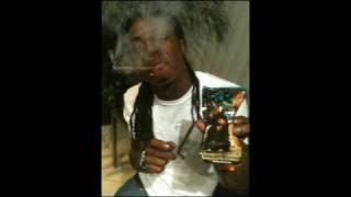 Lil Wayne - Damn Damn (That Flower) New - [Jan. 2010]