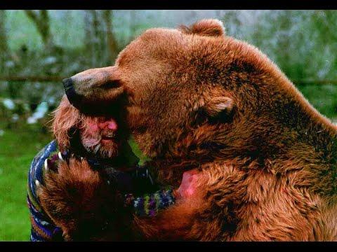 oso mata a una mujer en un programa de television