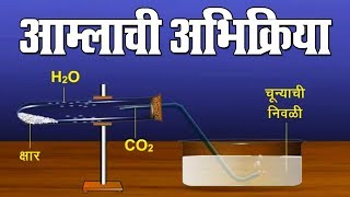 आम्लाची अभिक्रिया | Aamlachi Abhikriya | 10th Std | Science | Marathi Medium | Home Revise