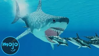 Top 10 Facts About the Megalodon