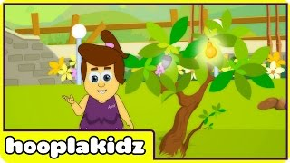 I Had A Little Nut Tree | Nursery Rhymes By Hooplakidz