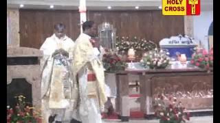 Villianur Lourdes Shrine Annual Feast  Flag Hoisting Mass - 22-04-2017
