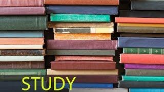 6 Hour Focus Music: Study Music, Alpha Waves Music, Homework Music, Soft Music, Relaxation ☯517