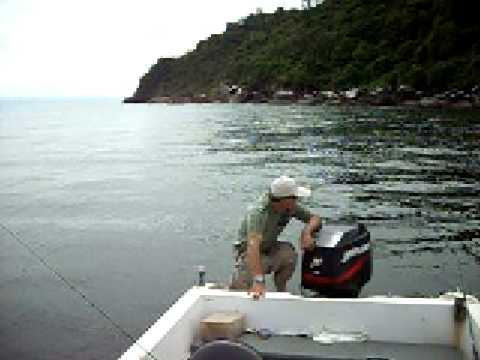 Beto Cagão do Mar desovando na Barra do Sul
