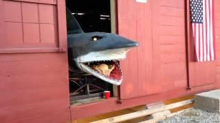 Mechanical Shark at Bobbers