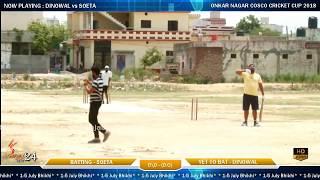 Onkar Nagar(Phagwara) Cosco Cricket Cup 2018