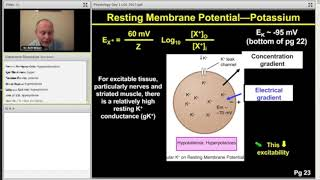 Membrane Potential - Step 1 Physiology