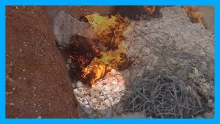 Chicks Struggle to Escape Being Burned to Death